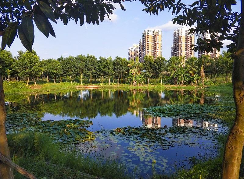 東岸濕地公園.jpg